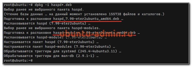 Установка HASP Licence manager в Ubuntu
