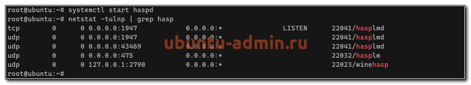 Проверка работы hasp